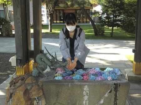 西野神社の花手水