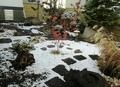 令和2年11月4日の西野神社境内