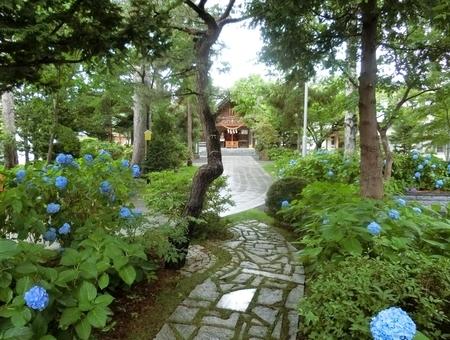 西野神社の拝殿正面(遠景)