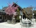 西野神社の社殿側面
