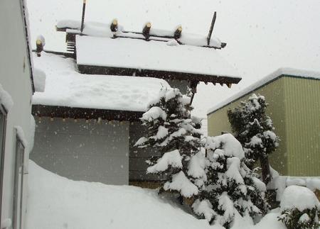 西野神社の本殿と幣殿(側面 外観)