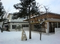令和3年 西野神社三が日 儀式殿と社務所