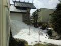 本殿裏の残雪(令和3年3月下旬)