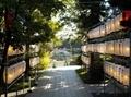 令和3年9月 西野神社 秋まつり(参道と奉納提灯)