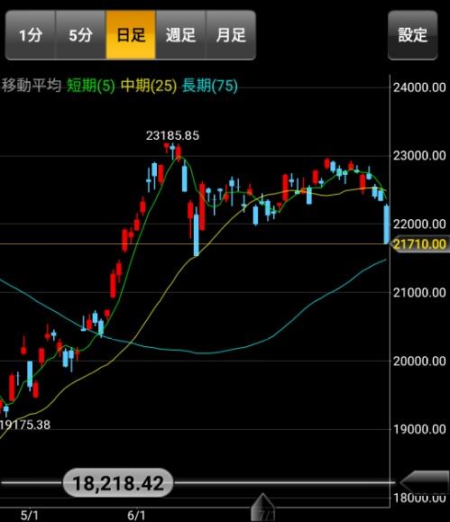 日経平均株価日足