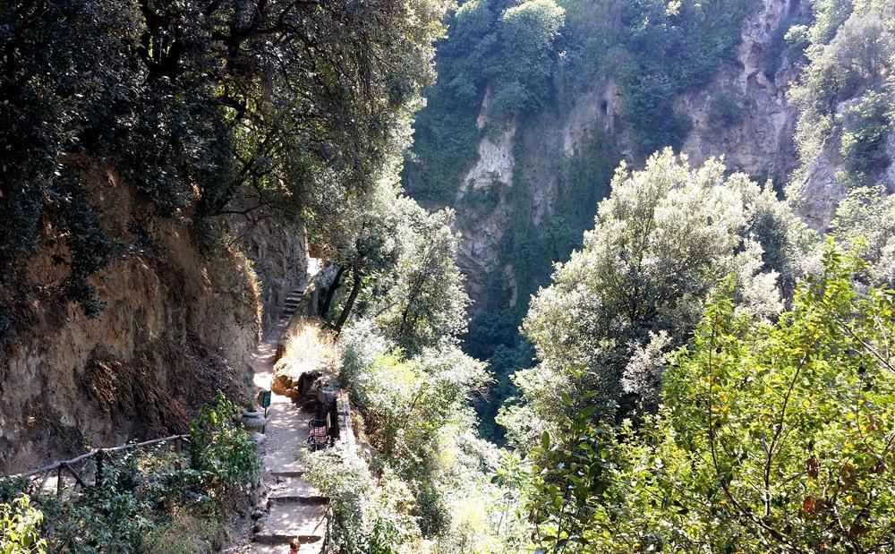 グレゴリウス法王の別荘の山道