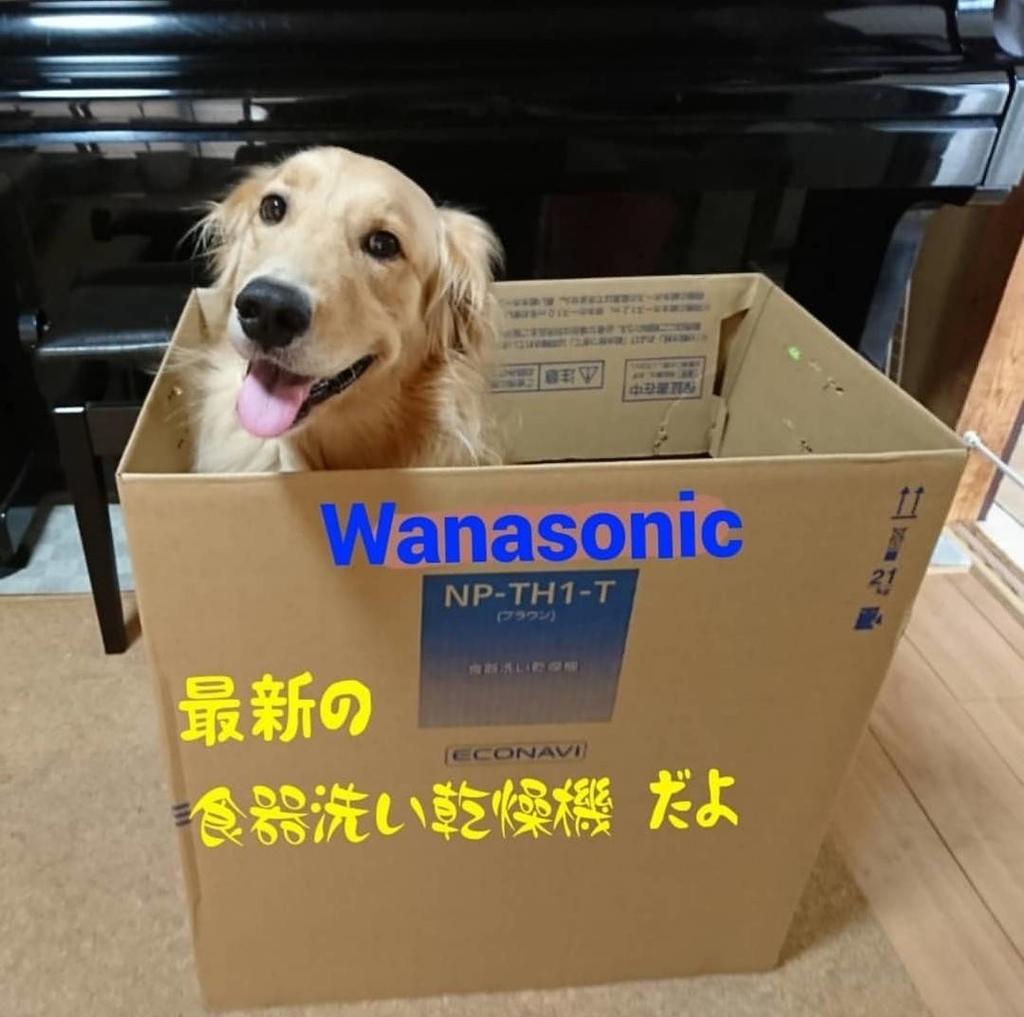 f:id:nitchimosan:20190202225735j:plain
