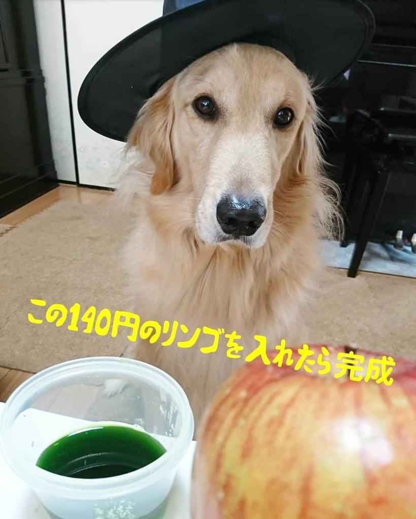 f:id:nitchimosan:20190220130625j:plain