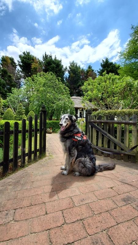 浜名湖ガーデンパークの国際庭園イギリスと大型犬