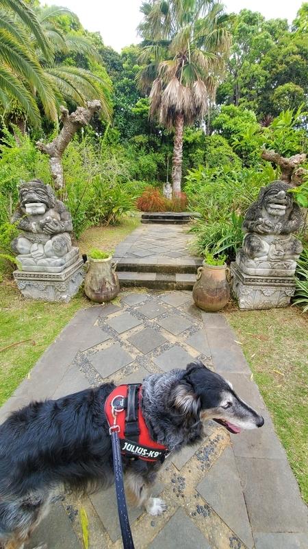 浜名湖ガーデンパークの国際庭園インドネシアと大型犬