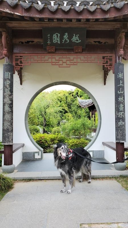 浜名湖ガーデンパークの国際庭園中国と大型犬