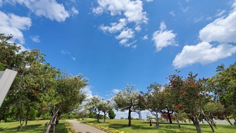 青空がキレイな浜名湖ガーデンパーク