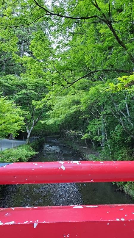 小国神社を流れる宮川