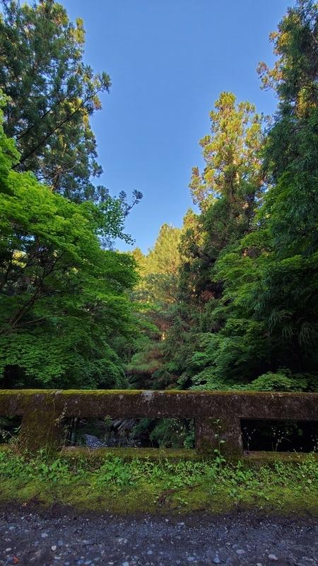 小国神社の美しい景色