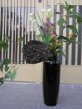 蜂の巣 生け花