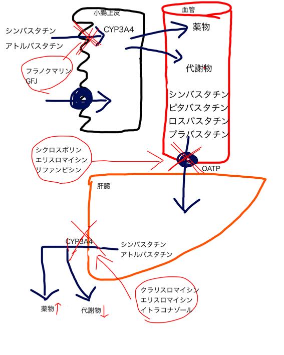 f:id:nitrotake8:20171201135358p:plain
