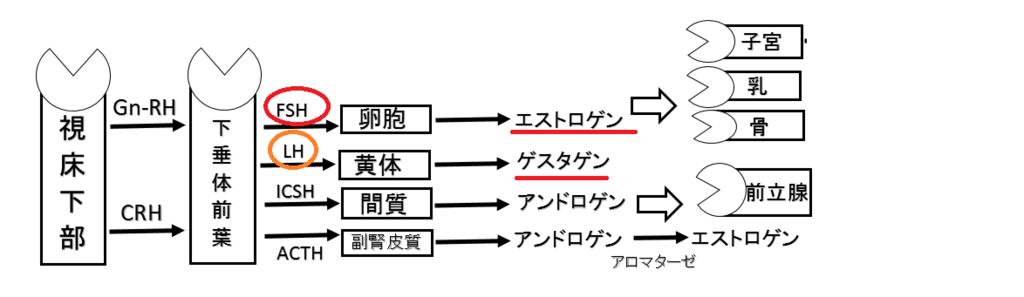 f:id:nitrotake8:20180701072840p:plain