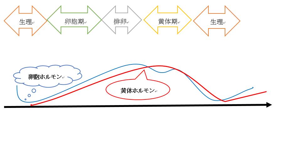 f:id:nitrotake8:20181215194449p:plain