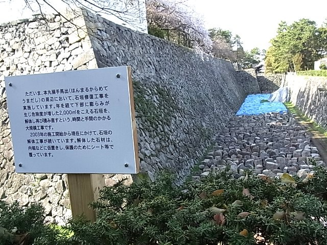 f:id:niwasawa:20110410161607j:image
