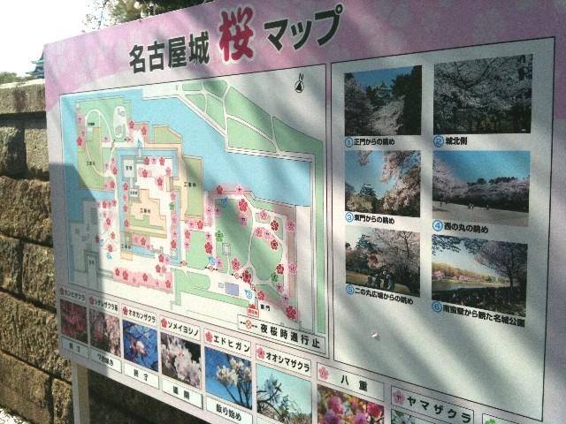 f:id:niwasawa:20110410165438j:image