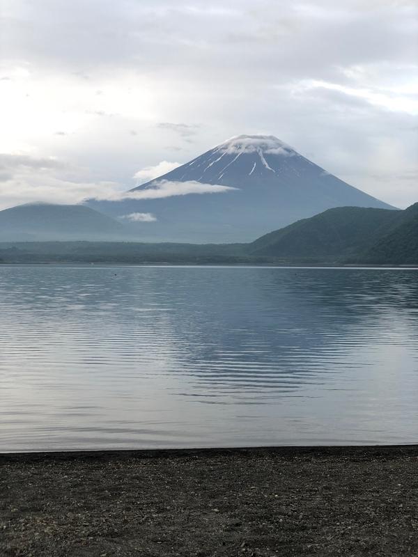 f:id:niwatori-napi:20190623132204j:plain