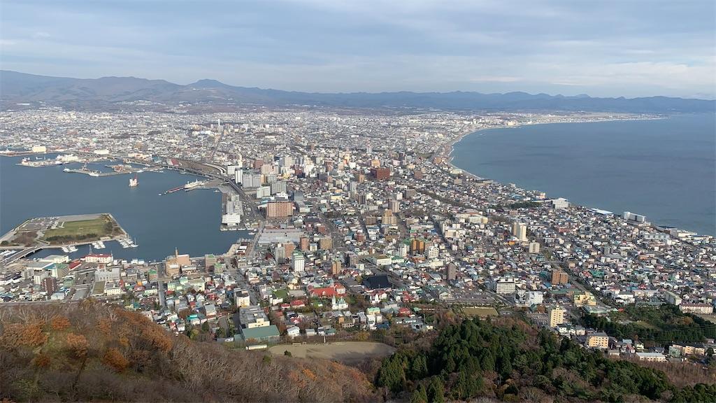 f:id:niwatori51:20201118221741j:image