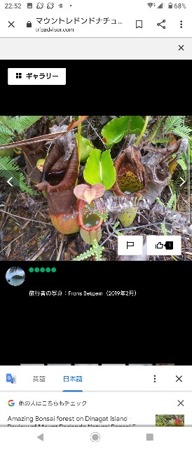 f:id:niziiro_week:20200823235429j:image