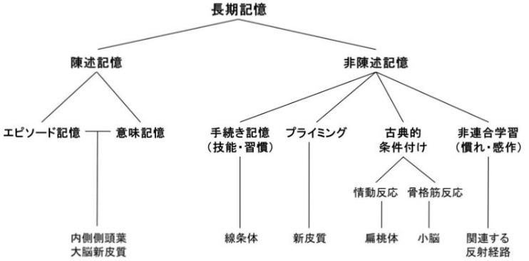 f:id:nnaho:20191217175017j:plain