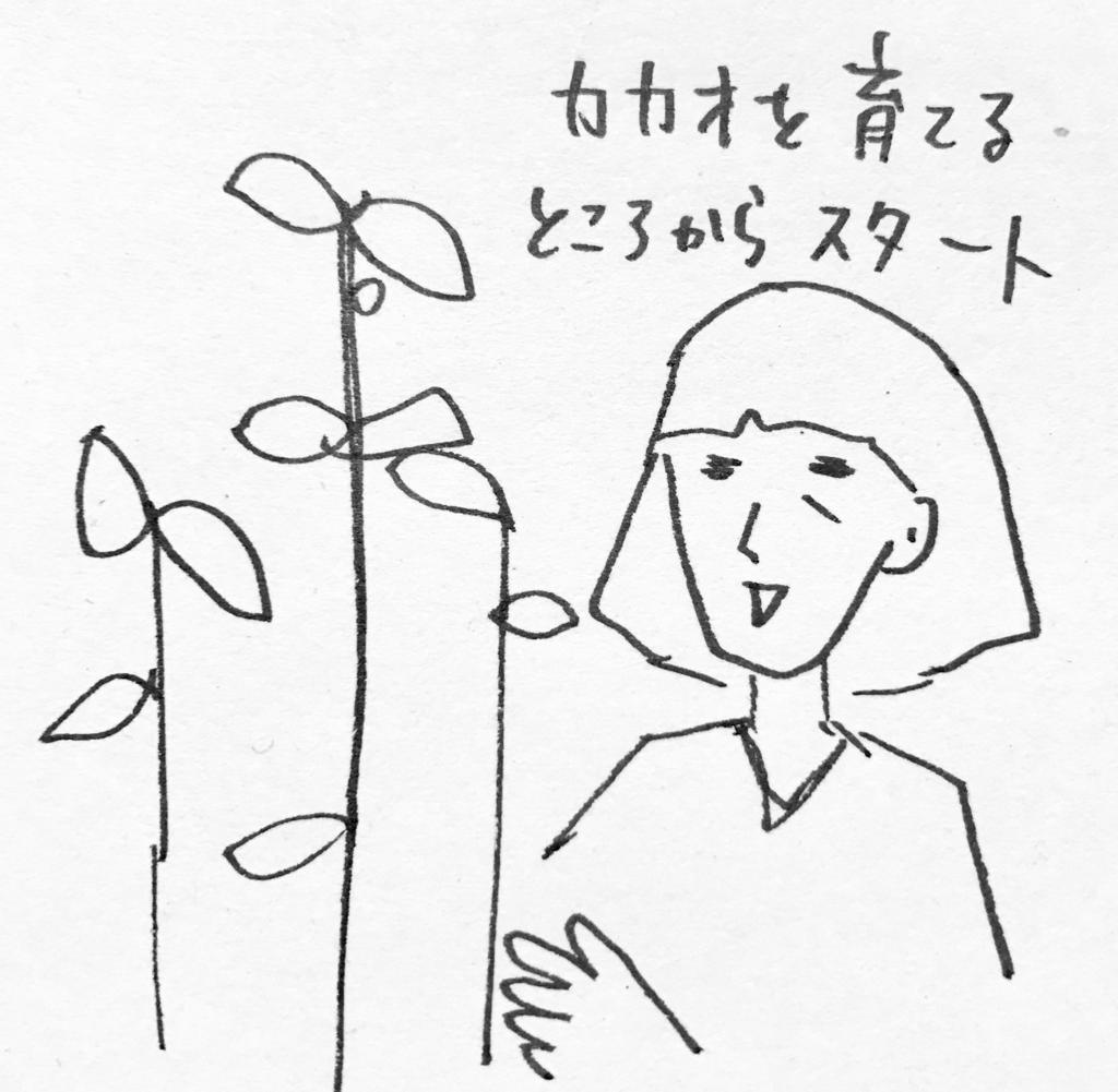 f:id:nnnaaa00:20170130213530j:plain