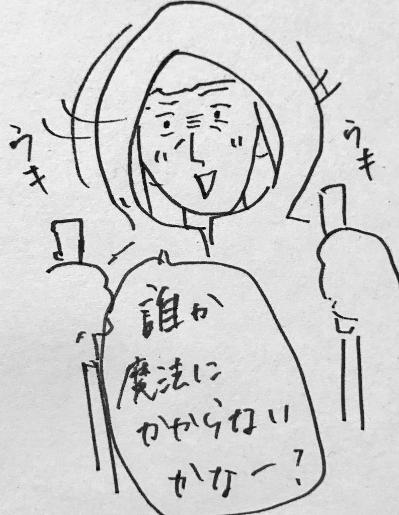 f:id:nnnaaa00:20170224204619j:plain
