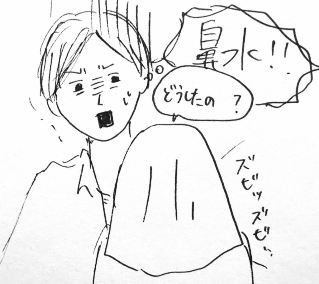 f:id:nnnaaa00:20170303211759j:plain
