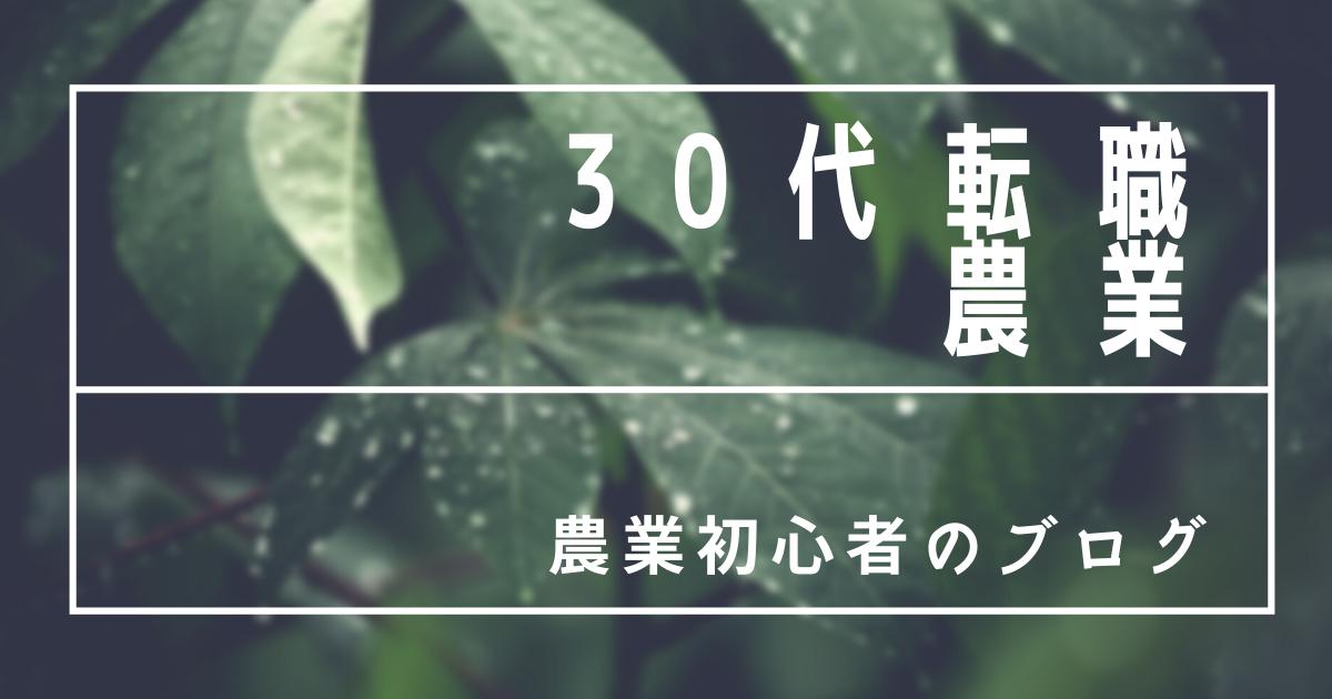 f:id:no-riiiii:20210708212643p:plain