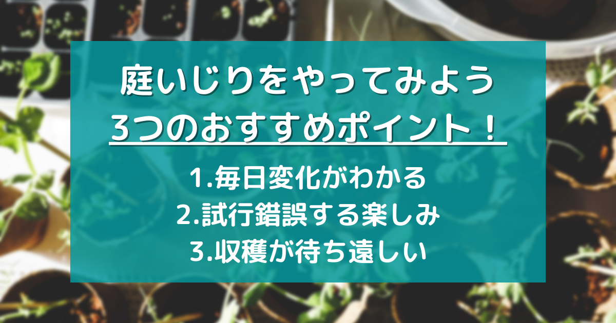f:id:no3b312:20210613230821p:plain