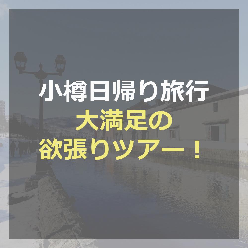 3月日帰り小樽観光ルート