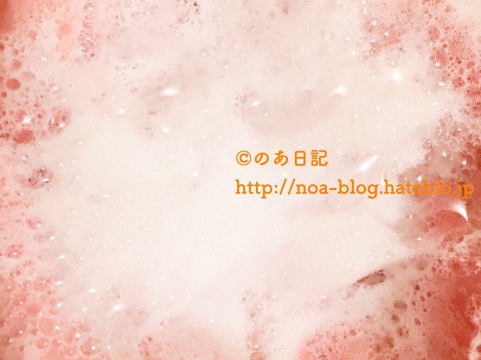 f:id:noa_blog:20180525165118j:plain