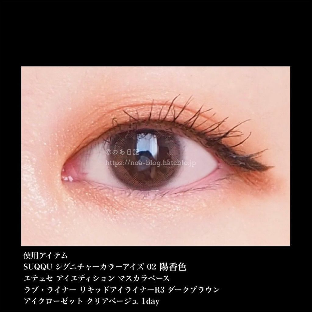 f:id:noa_blog:20210117163839j:image