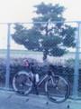 20090819 夕練にて