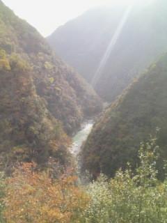 2009/11/15 祖谷渓