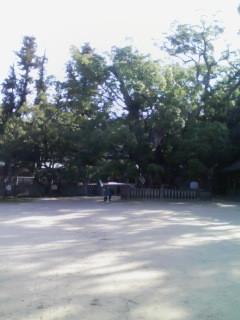 2009/12/27  大山衹神社