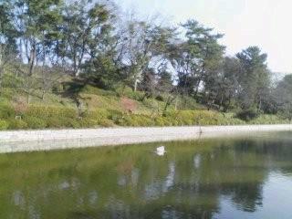 2010/1/30 堀の内公園-2