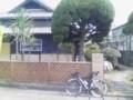 2010/3/14 陽だまり 外観-2