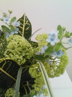 20101015 花展
