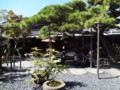 20110923 山田家 中庭