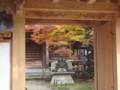 20121110 昼練:法泉寺 紅葉