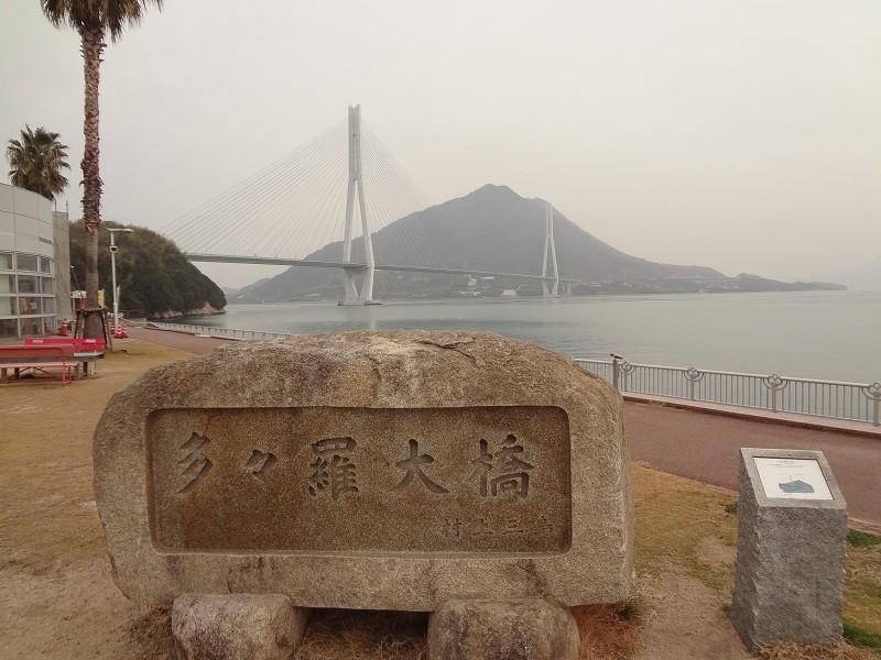 20130113 チーム練:初詣Ride