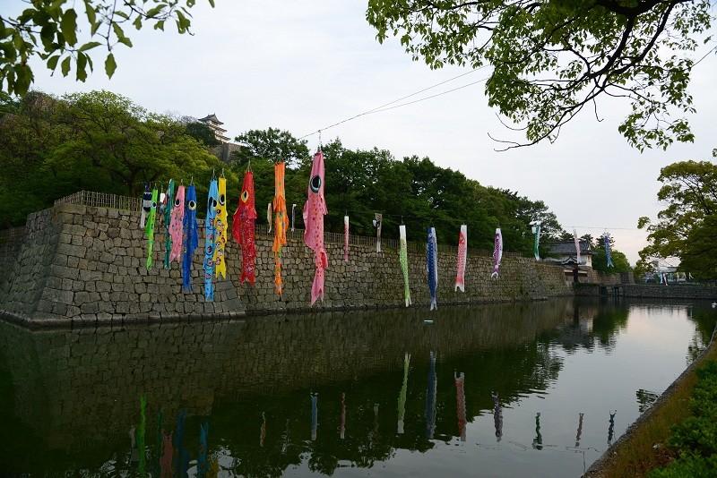 20130511 丸亀城 お堀にて
