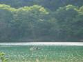 20140510 にし阿波試走 吉野川運動公園にて…