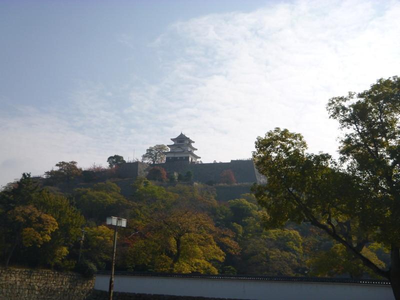 20141122 丸亀城