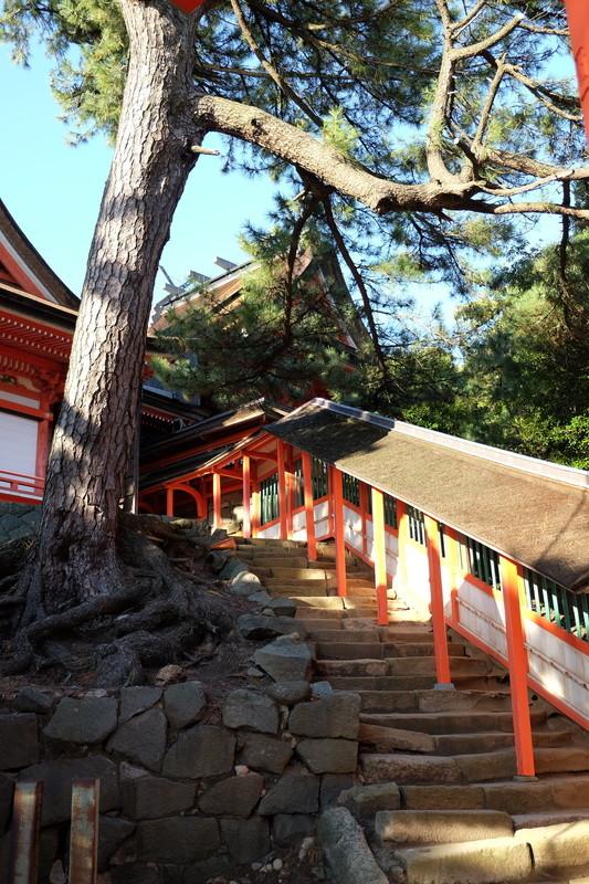 20151018 島根 日御碕神社