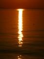 20160602 夕陽…